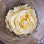 Rose stabilisée